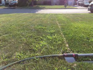 Les petits arrosages fréquents feront que favoriser la pousse des mauvaises herbes