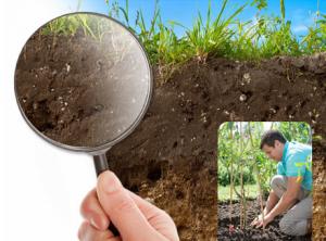 Le secret de la réussite commence par un test de sol