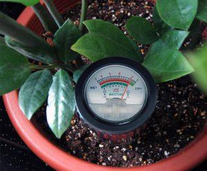 Le ph-mètre nous permet de verifier l'acidité du sol